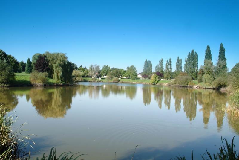 Cadre de vie ville de saran for Horaire piscine saran